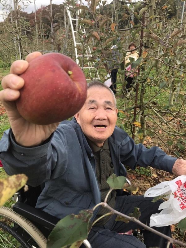 今日からリンゴ狩り(1日目)